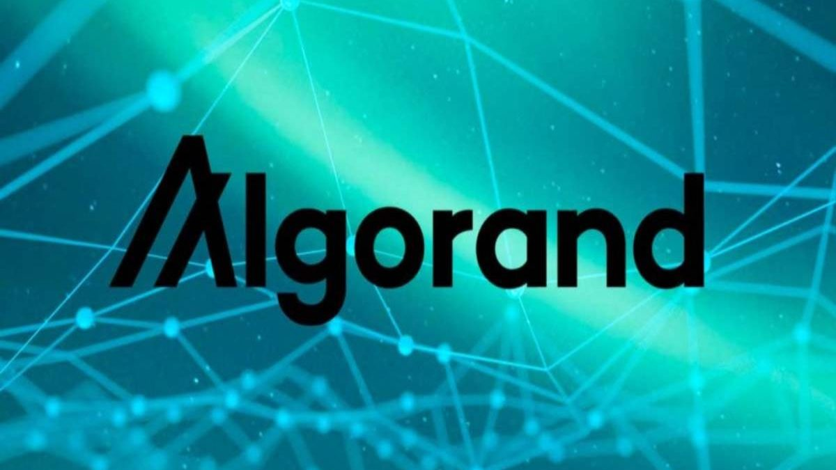 What is Algorand? – Work, Special, and More