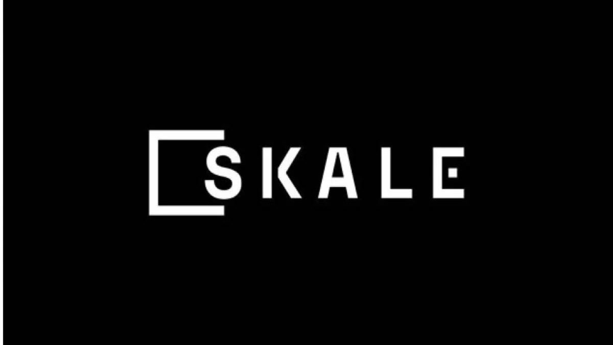 What is the SKALE Crypto Protocol? – Sidechains, and More