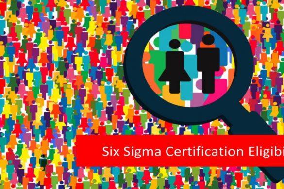 Lean Six Certification